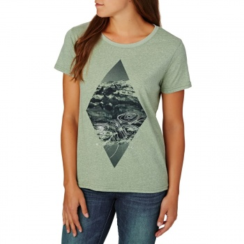 Animal ANIMAL MORNING VIEW T-SHIRT DUSTY LEAF GREEN