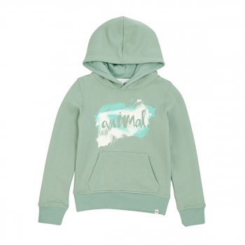 Animal ANIMAL RACHELLE HOODY SAGE GREEN