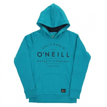 Boys Hoodies products