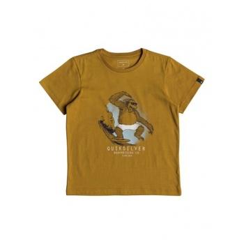 Quiksilver QUIKSILVER FREESTYLE-T-SHIRT FOR BOYS 2-7-ORANGE