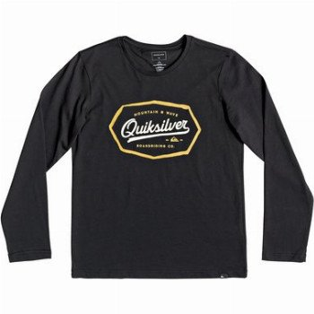 Quiksilver QUIKSILVER LIVING ON THE EDGE-LONG SLEEVE T-SHIRT FOR BOYS 8-16-BLACK