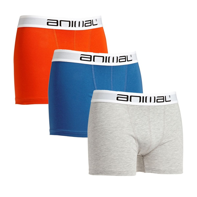 ANIMAL BLOCK UNDERWEAR ASSORTED