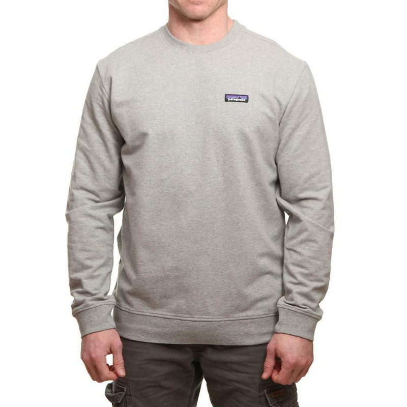 Patagonia P6 Label Midweight Crew Feather Grey