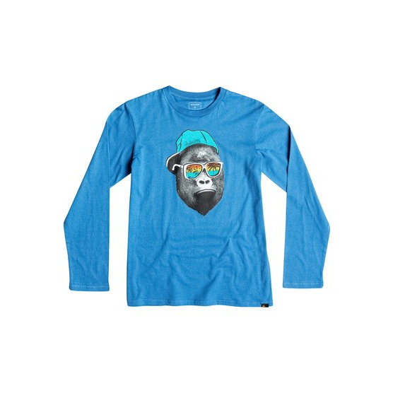 QUIKSILVER CLASSIC KONG BUSINESS-LONG SLEEVE T-SHIRT FOR BOYS-BLUE