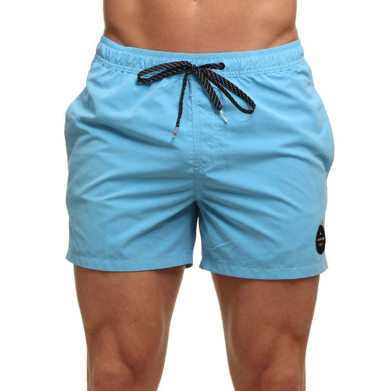 Quiksilver Everyday Solid Boardshorts Bonnie Blue